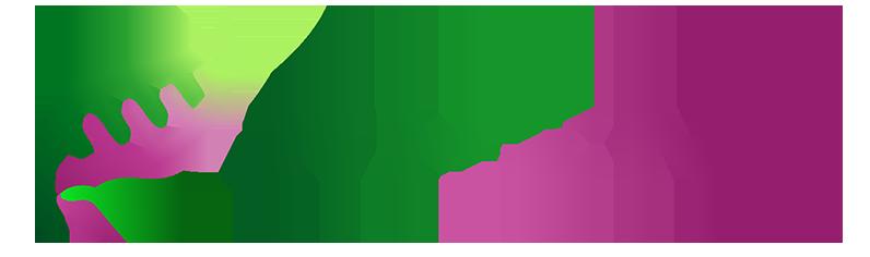 Pheno AG